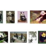 ImageNet: A Large-Scale Hierarchical Image Database(Jia Deng et al.)